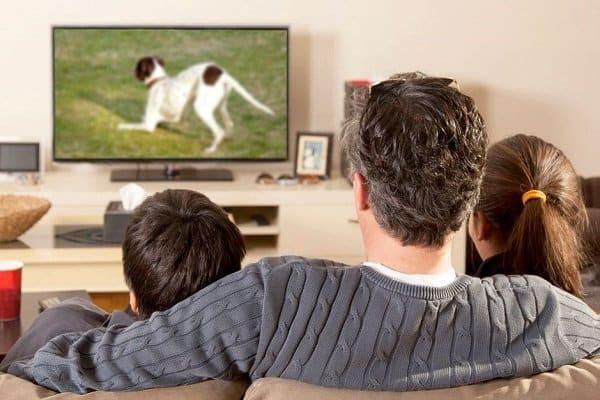 Familia, mirar tele